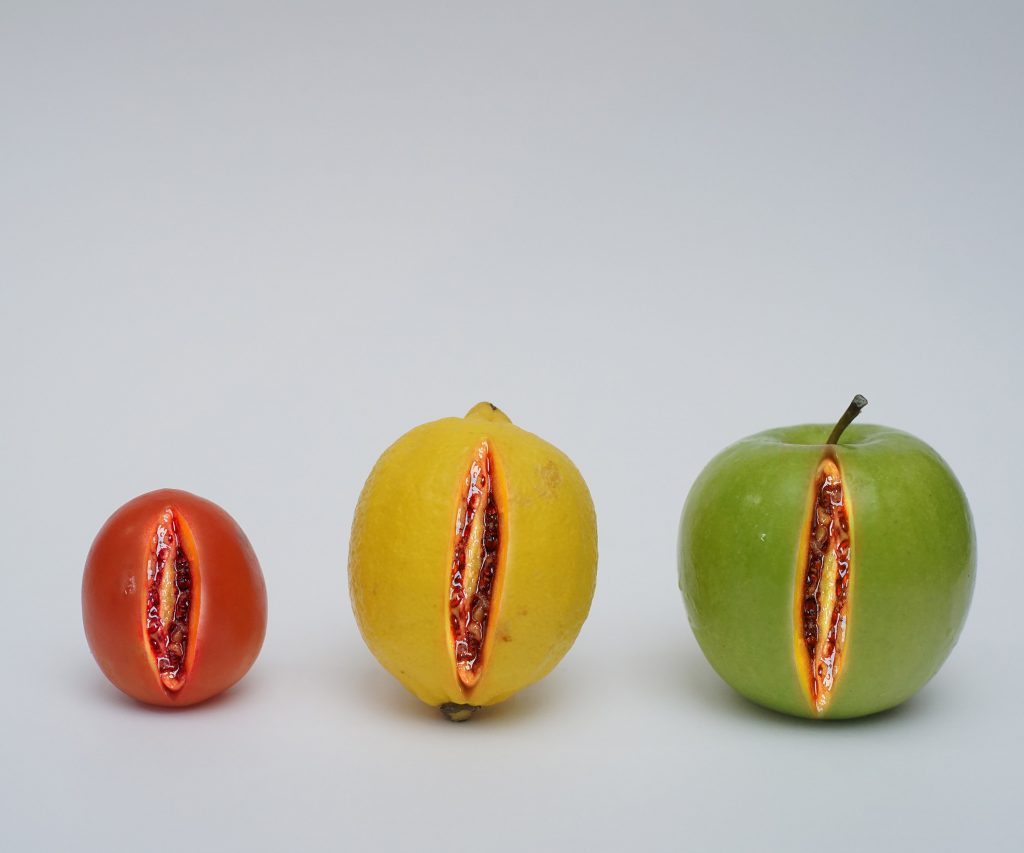 A tomato, a lemon, and an apple all sliced in the middle, filled with a red substance.