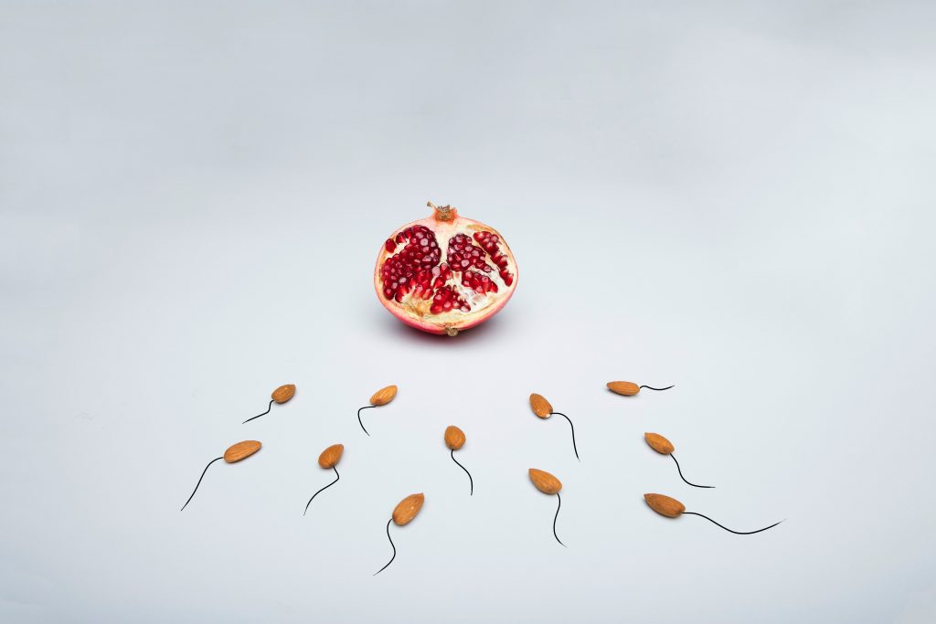 Almonds with tails, shaped like sperm, moving toward a pomagranete.